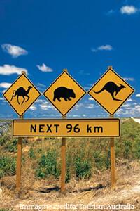 Il nostro partner partner prepara gli studenti alla vita australiana anche negli aspetti meno conosciuti