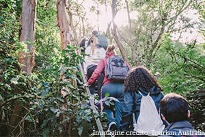 Bush walking e solo una delle molte attivita culturali australiane offerte dall Academy di lingua inglese
