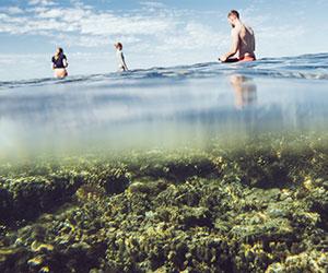 La terza settimana è dedicata alla scoperta da vicino delle meraviaglie della grande barriera corallina