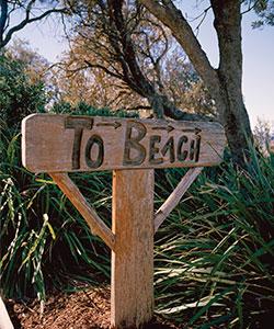 Durante le molte esplorazioni in programma nella foresta pluviale e nel bush poi arriverete sempre alla spiaggia