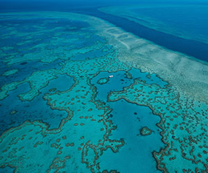 Veduta dall'alto della grande barriera corallina che avrai possibilità di esplorare durante l'ultima settimane del viaggio