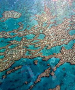 L'ultima settimana del viaggio studio sarà dedicata ad esplorare la grande barriera corallina con escursioni ed attività