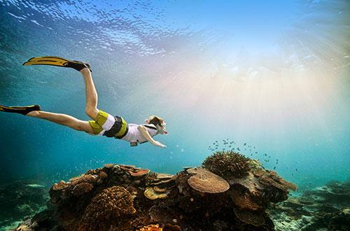 TecAustralia offre un'opportunità unica di viaggio studio sulla barriera corallina con anche attività di snorkling