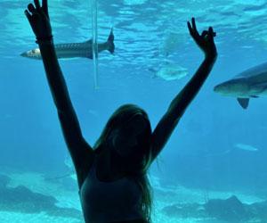 I nostri ragazzi in Australia possono godere dell'immersione culturale e in una natura incontaminata dove fare sport acquatici e molto altro in sicurezza