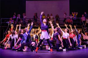 Le scuole private australiane offrono un curriculum che include moltissime materie creative e gli studenti possono partecipare a gruppi di teatro, musica, arte e spettacolo.
