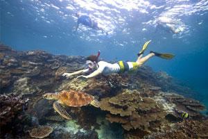 Gli studenti potranno studiare la biologia marina applicata in modo esperienziale visitando luoghi spettacolari come il reef